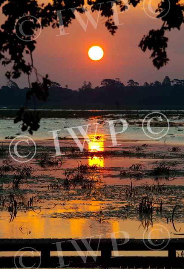 lake Wendouree sunset2jpg