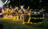 Christmas decs 2014 IWP -45jpg